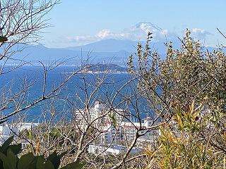 鎌倉日和【材木座から逗子・披露山】