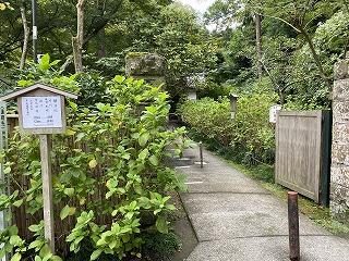 鎌倉日和【明月院】
