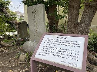 鎌倉日和【和田塚】